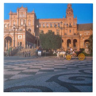 Horse drawn carriage in the Plaza de Espana in Large Square Tile
