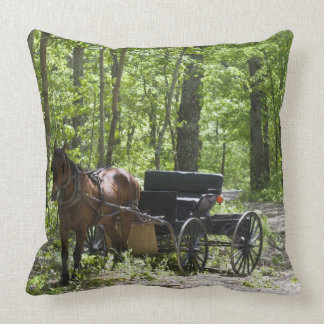 Horse drawn carriage tethered in woods cushions
