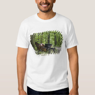 Horse drawn carriage tethered in woods shirt