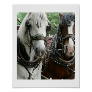 Horse Drawn Poster