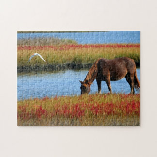 Horse Drinking Puzzle