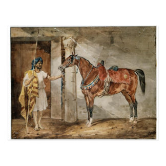 Horse (Eastern) by Theodore Gericault Postcard