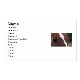 Horse Face Closeup Pack Of Standard Business Cards