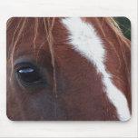Horse Face Closeup Mousepads