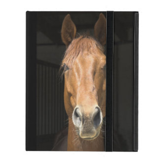 Horse Face Photograph iPad Covers