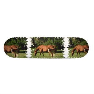 Horse Family Skateboard
