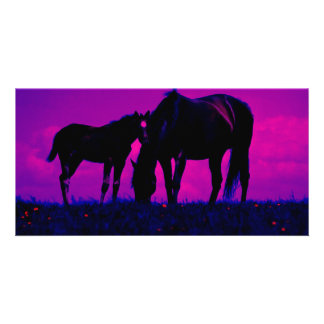 Horse & Filly Customized Photo Card