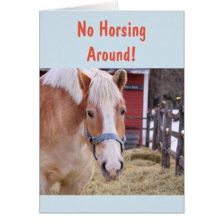 Horse Get Well Soon Card