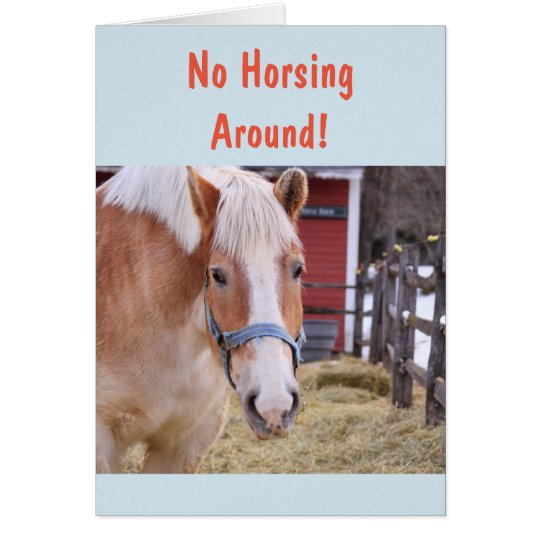 Horse Get Well Soon Card
