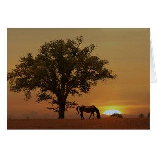 Horse Happy Birthday Beautiful Day with Oak Tree Card