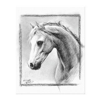 Horse head charcoal art Wrapped canvas