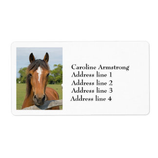 Horse head chesnut personalized address labels