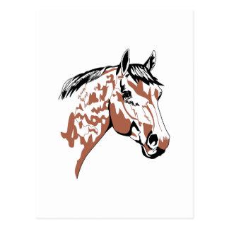 Horse Head Profile Postcard