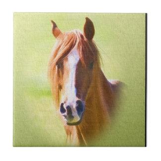 Horse Head Tile