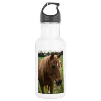 Horse Hello 532 Ml Water Bottle