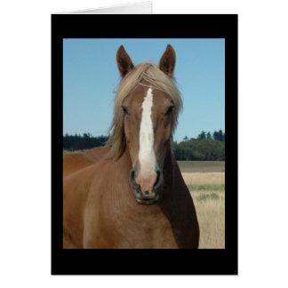 Horse Hello Card
