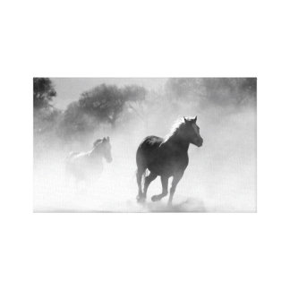 Horse Herd | Black and White Canvas Print
