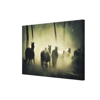 Horse Herd in the Mist Canvas Print