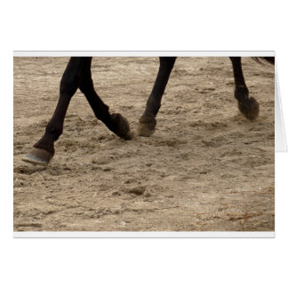 Horse hooves card