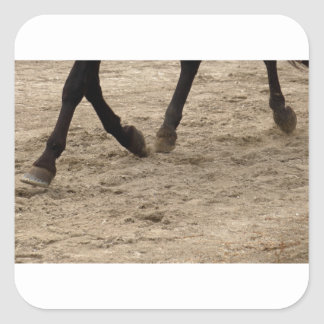 Horse hooves square sticker