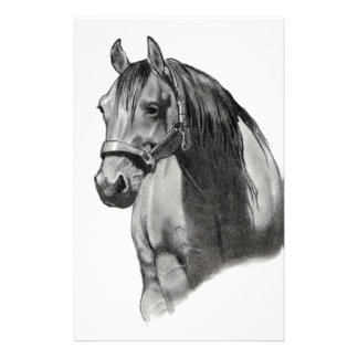 HORSE IN PENCIL STATIONERY