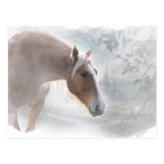 Horse in Snow Season's Greetings Postcard