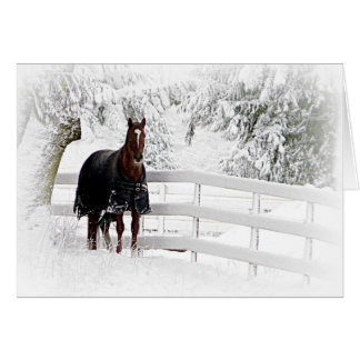 Horse in Snowy Pasture Card