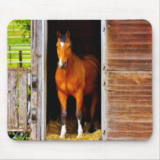 Horse In Stable Mouse Pad