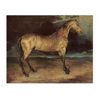 Horse in the storm by Theodore Gericault Postcard