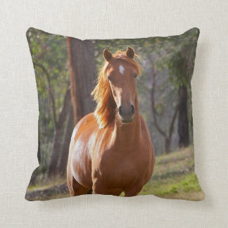 Horse In The Woods Cushion