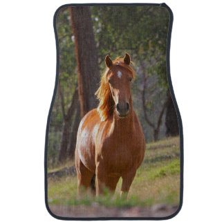Horse In The Woods Floor Mat