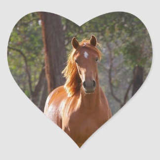 Horse In The Woods Heart Sticker