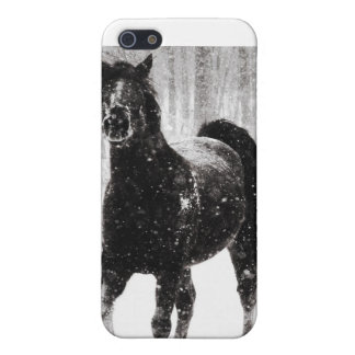 Horse in Winter Cover For iPhone 5/5S