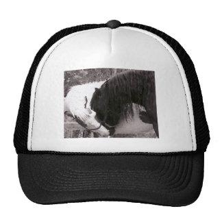Horse Kiss Painting Customizable Trucker Hat