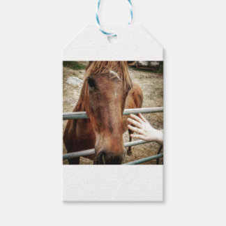 Horse Life Gift Tags