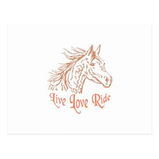 HORSE LIVE LOVE RIDE POSTCARD