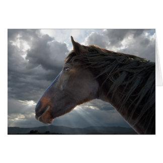 Horse Loss Sympathy Card