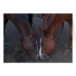 Horse Love (Blank inside) Card