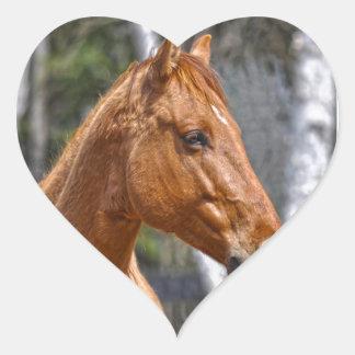 Horse-lover s Equine Animal Design Heart Sticker