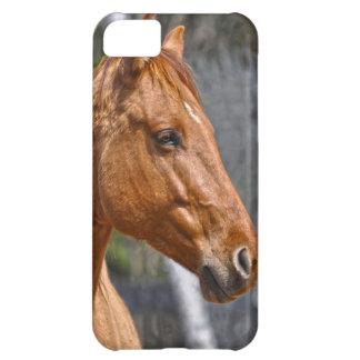 Horse-lover's Equine Animal Design iPhone 5C Case