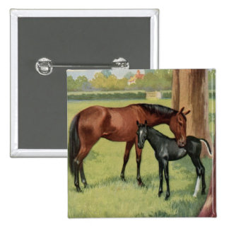 Horse Mare Foal Equestrian Vintage Image 15 Cm Square Badge