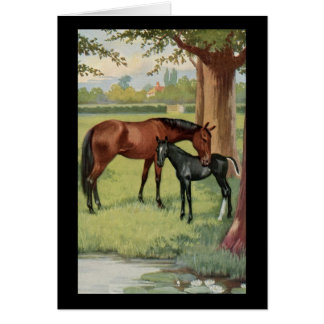 Horse Mare Foal Equestrian Vintage Image Note Card