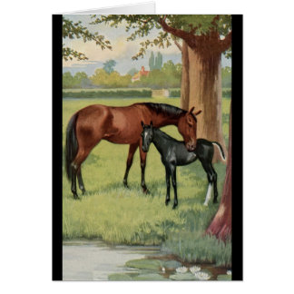 Horse Mare Foal Equestrian Vintage Image Greeting Card