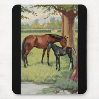 Horse Mare Foal Equestrian Vintage Image Mouse Pad