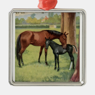 Horse Mare Foal Equestrian Vintage Silver-Colored Square Decoration
