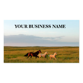 Horse Mare & Twin Foals Horse Babies Business Card