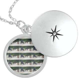 Horse-n-Buggy Sterling Silver Round Locket