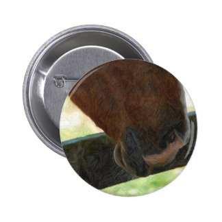 horse nose artwork buttons