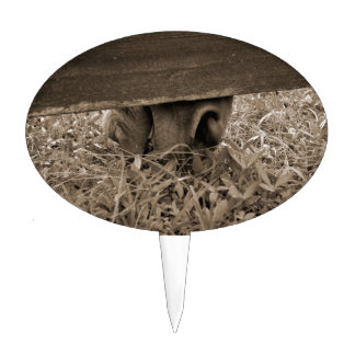 Horse nose grazing under fence toned cake topper