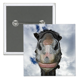 Horse Nose Knows! Funny Smiling Horse Pins